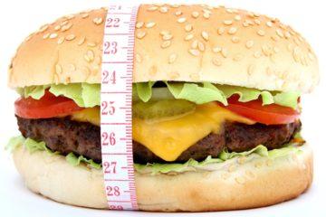 Hamburger on a Diet